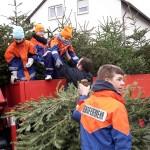 Wohin mit dem ausgedienten Weihnachtsbaum?